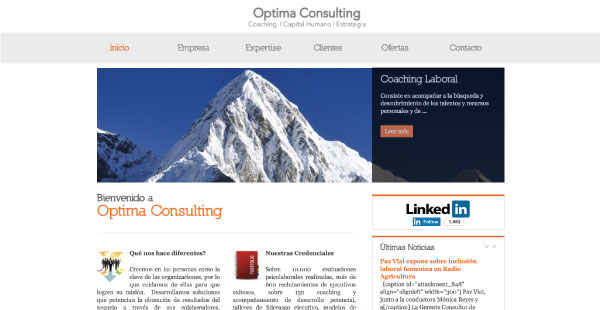 optimaconsulting